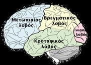 psychotherapeia kai egkefalos